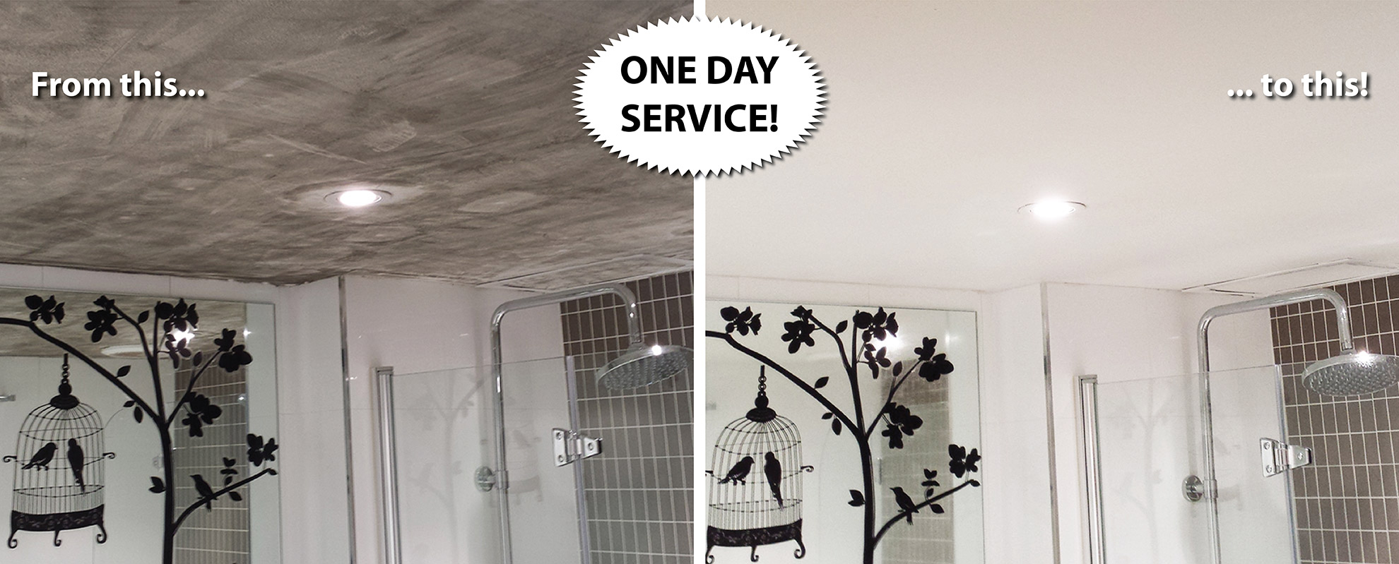Mould Removal Sydney Butler Cleaning Professionally