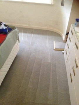 Carpet Cleaning Sydney Carpet Cleaners Sydney Butler