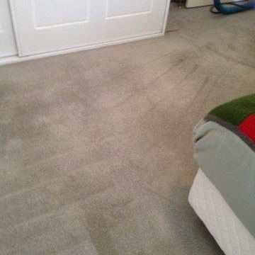 Carpet Steam Cleaning - After Cleaning